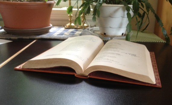 Case-bound book, opened