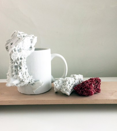 Digital Erratics, 3-D printed coral and I love NY mug, 2016