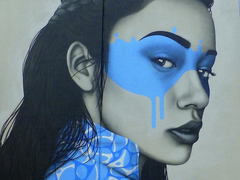 Shinoya Mural by Fin DAC in Melbourne