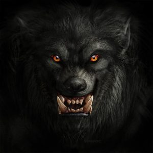 Werewolf Advice: the Kill is not Always Quick
