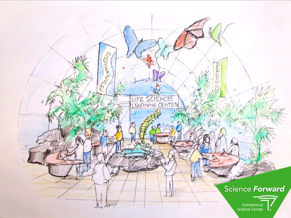 CSC_Science Forward_Butterfly Conservatory Concept Sketch_255537