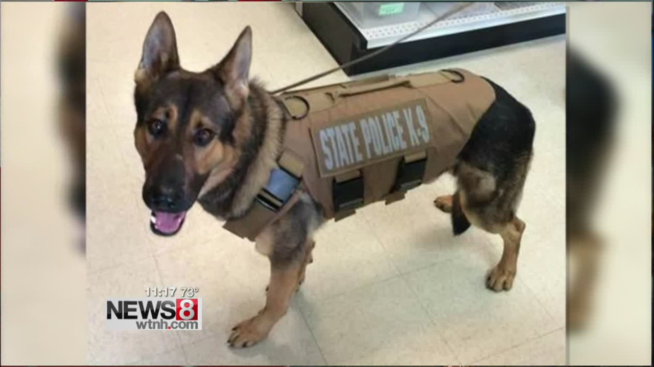 Connecticut State Police K-9 Tobi Receives Body Armor