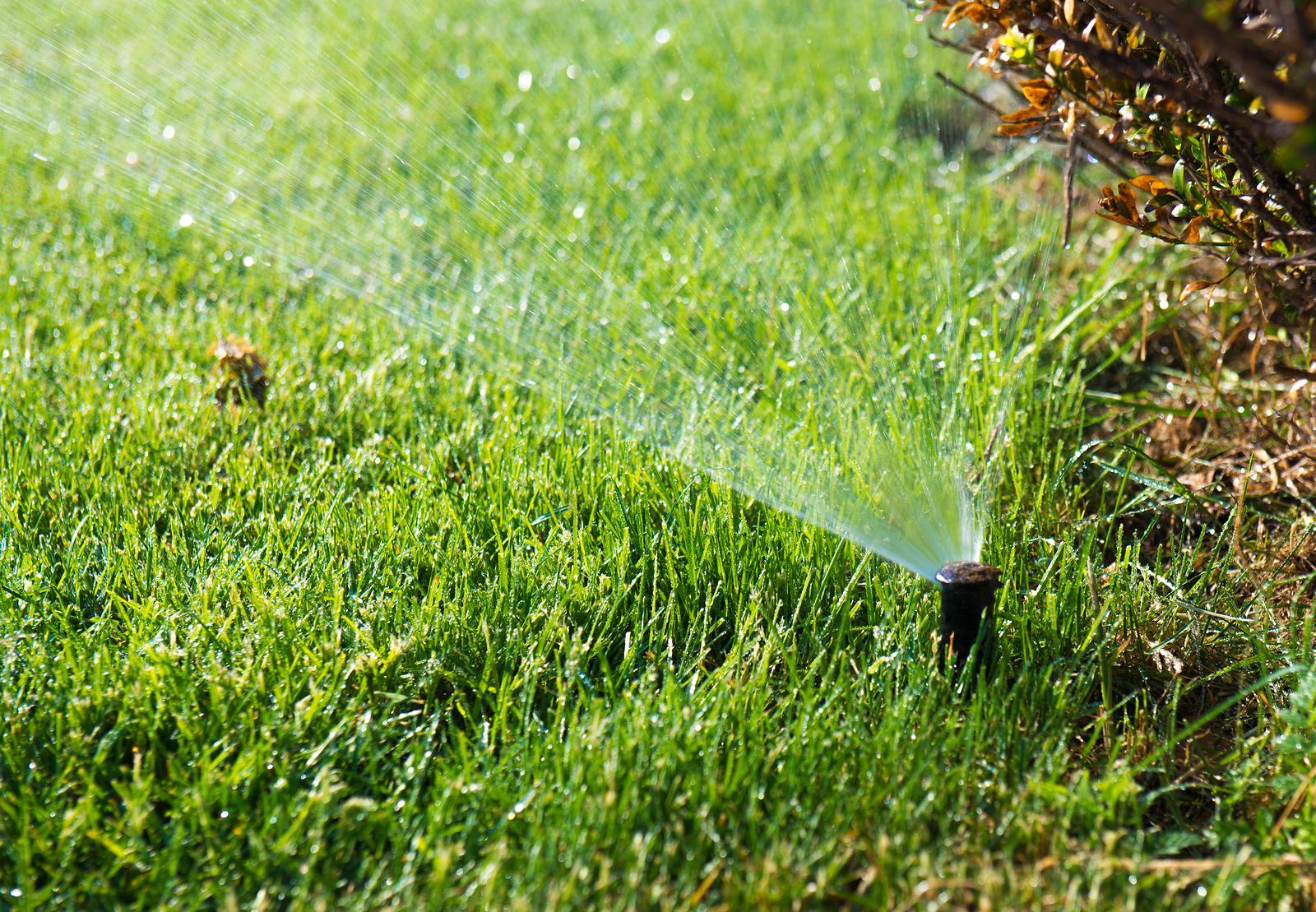 Lawn water sprinkler spraying water over grass in garden_335228