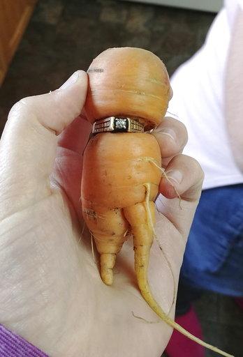 Carrot Engagement Ring_510500