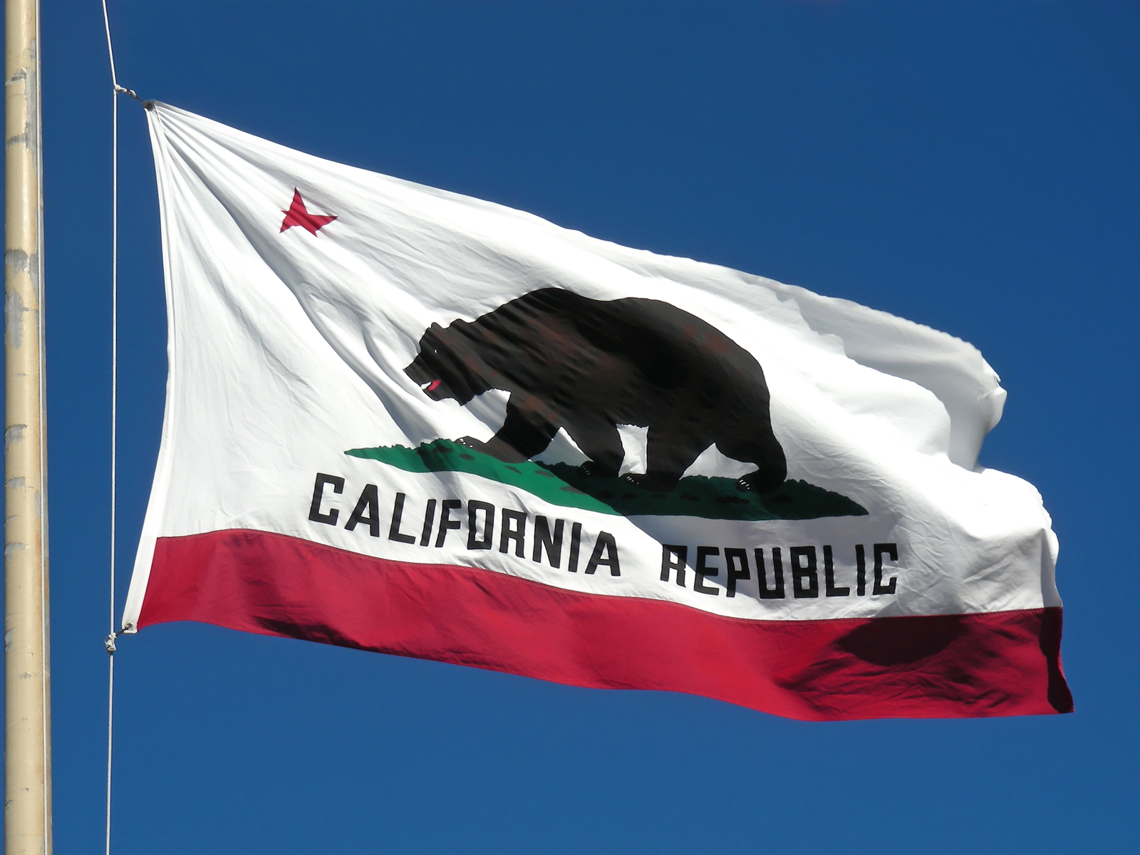 California Flag_1528958757248