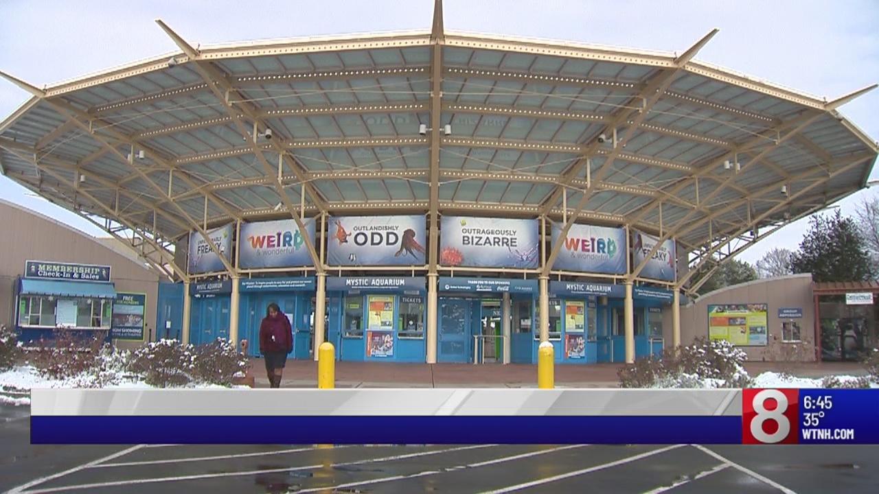 Mystic Aquarium holds job fair Saturday