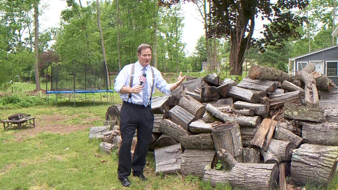 Web Extra: Hamden to host tornado damage assessment meeting