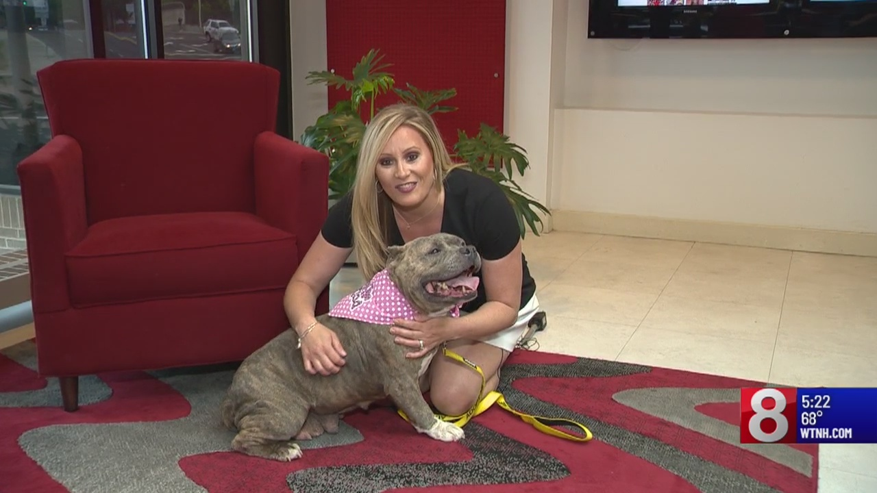 Pet of the Week: Jocelyn