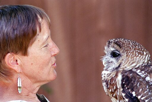 Kathleen Ramsay, Mexican Spotted Owl