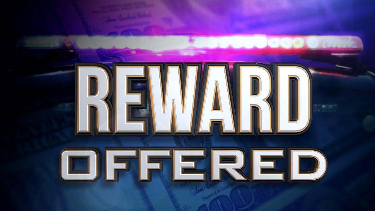 reward offered_1552664301995.jpg.jpg