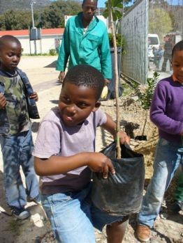 ARBOR DAY IN WESTLAKE - 7 SEPTEMBER '12 029