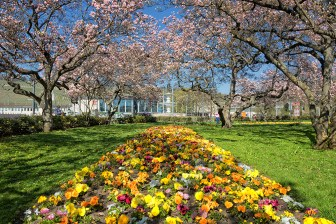 Kaisergarten im April 2018