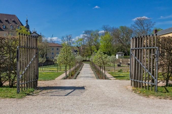 Frühling im Hofgarten der Residenz.