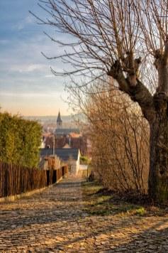 Blick vom Stationenweg auf die Kirche St. Stephanus im schönen Randersacker!