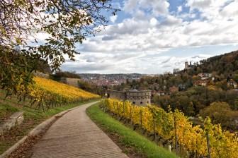 Weinwanderweg