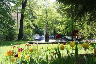 Frühlingsblumen am Ruschkewitz-Brunnen in der Nähe vom Sanderring.