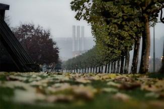 Auch das ist Würzburg: trüb-nebelige Herbststimmung am Mainufer.