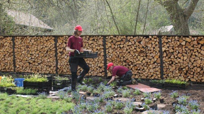 Umeå-Garten ist eröffnet