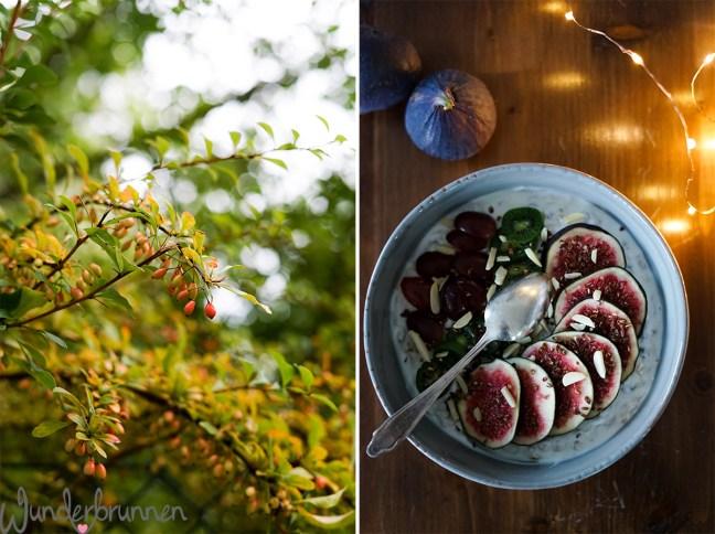 Hallo Oktober! Liebeserklärung an den Herbst - Wunderbrunnen - Foodblog - Fotografie