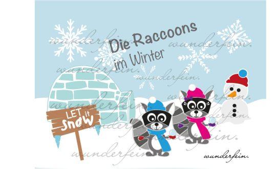 Die-Raccoons-im-Winter