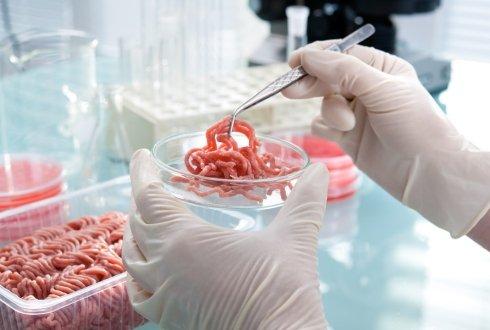 Advanced Food Microbiology - Minimal Processing