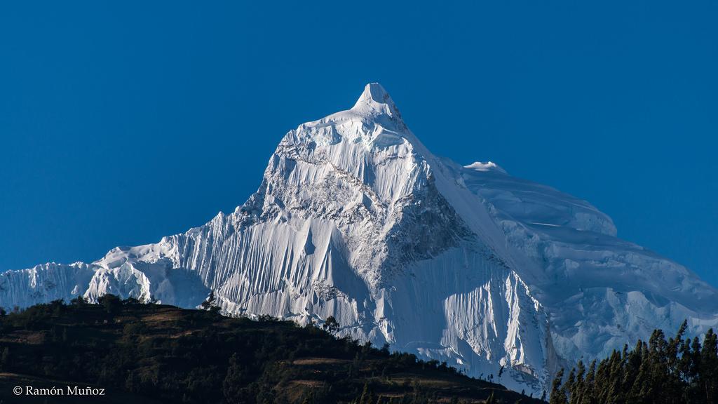 Das Jahr 2017 bringt uns hoch hinauf und trägt uns später über die Alpen