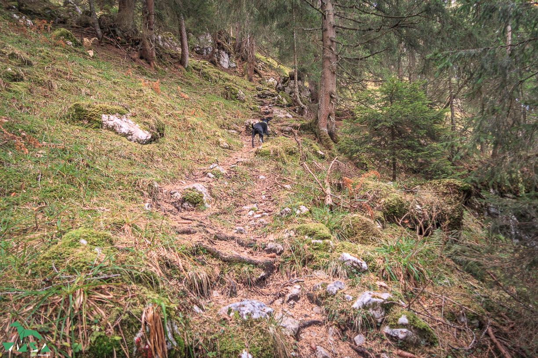 Aufstieg Bärenstuhl