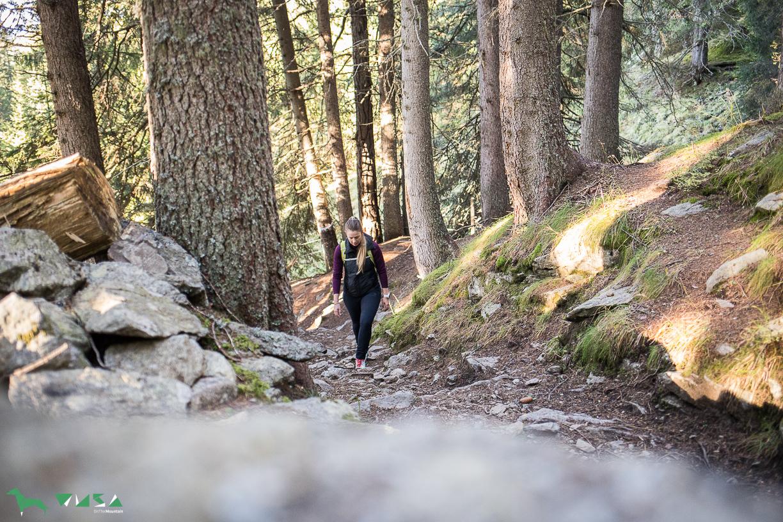 So ruhig im Wald auf dem Weg zum Preber.