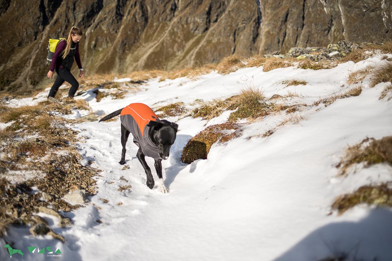 Luke genießet den Schnee.