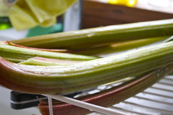 Fresh rhubarb, rhubarb, cooking, gluten free, blog, uk.