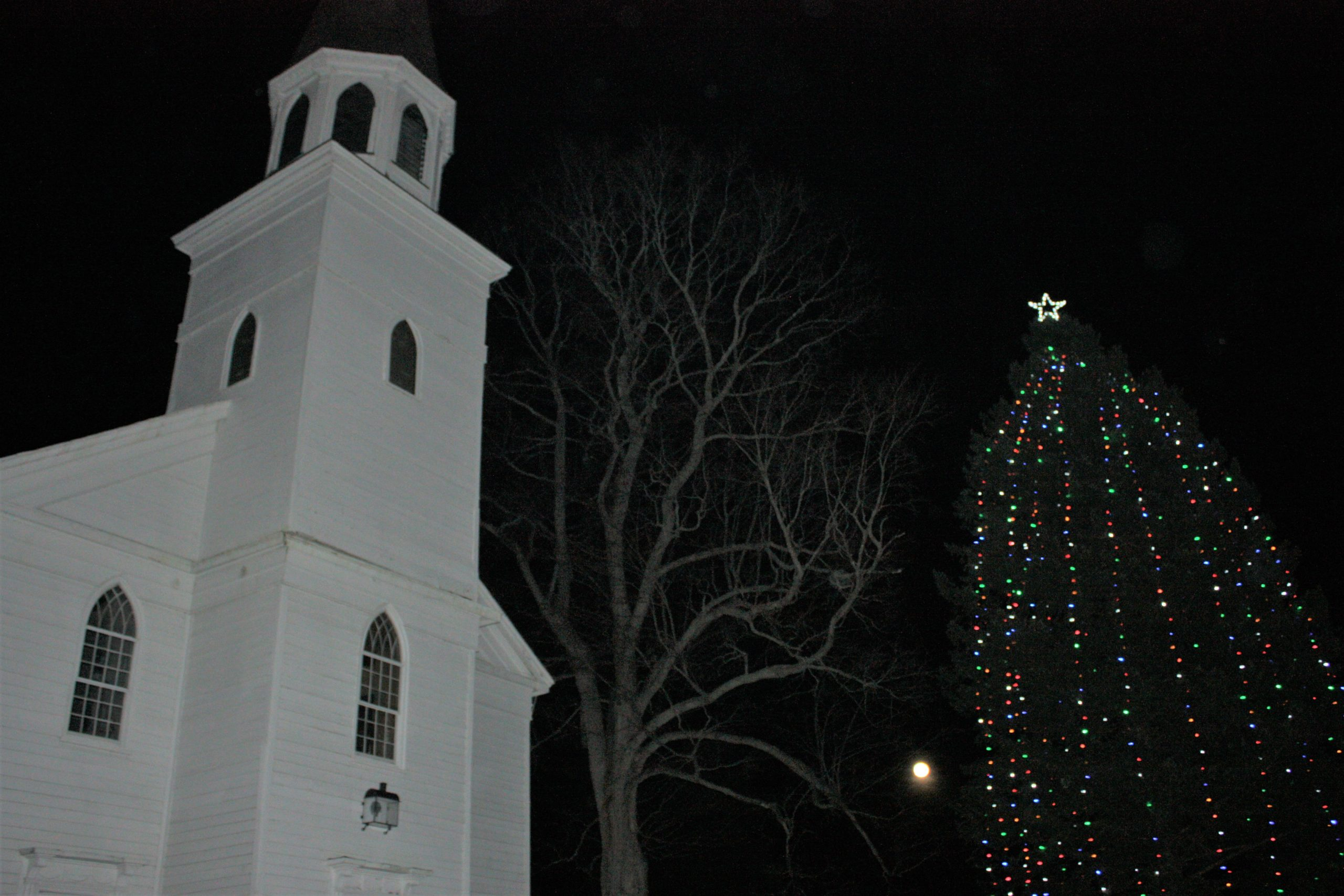 Church & Tree