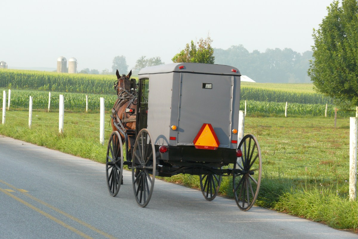 Amish Go To Court For Ordinance Violation