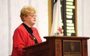 Senator Donna Boley addressing the crowd