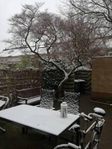 Expositie 'Zwolle in sneeuw en ijs' van de Zwolse fotograaf Koos Nuninga @ Havezate Zwolle