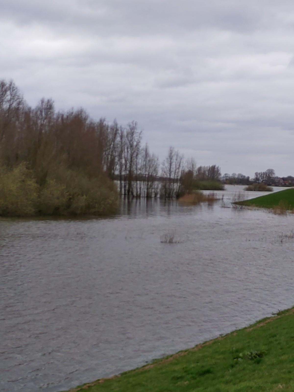 Het wassende water van de IJssel Een foto impressie van de ondergelopen uiterwaarden