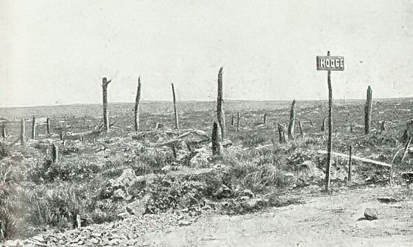 Hooge just after the War