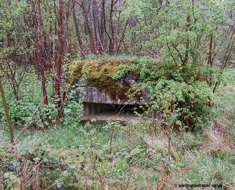 "One of the small ""forts"", WW1 bunker along Hunter Avenue"