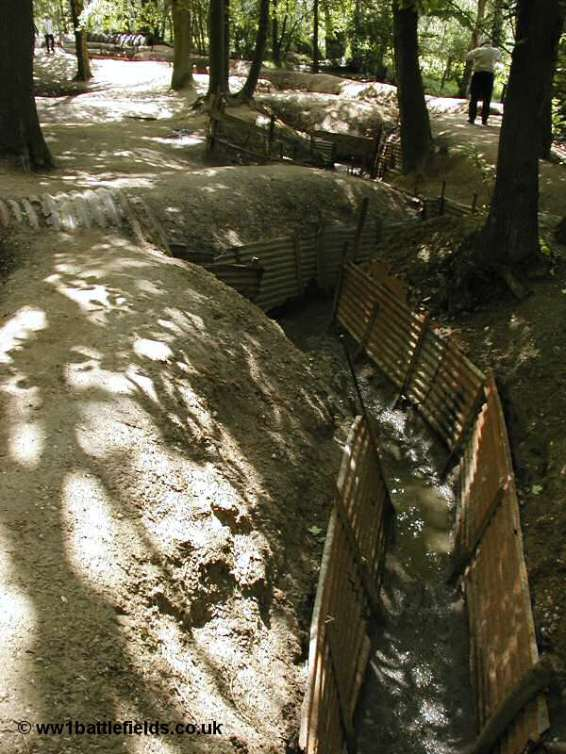Trenches in Summer