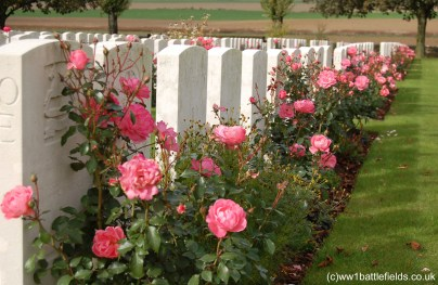 Flowers at Guillemont Road Cemetery