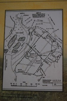 Map showing trenches in the wood