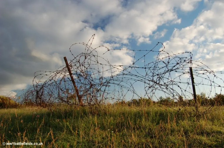Barbed wire near Verdun