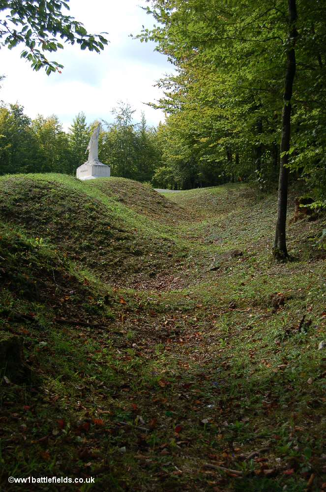 The outline of trenches at Mort-Homme