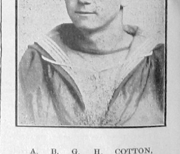 A B Cotton