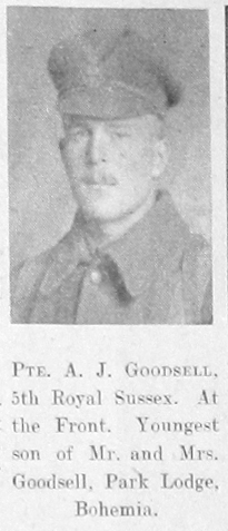 Alfred J Goodsell
