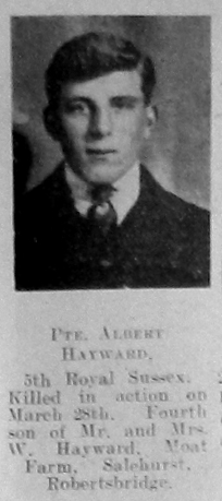 Albert Hayward