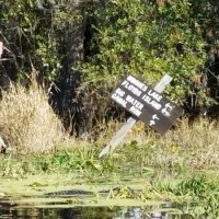 Okefenokee Suwannee River Outing 2017-12-10