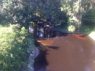 960x720 Muddy?, in Alapahoochee River, by April Huntley, 1 September 2014