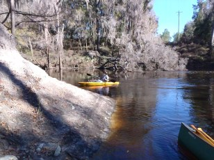 2048x1536 Starting upstream, in Alapaha River at Statenville, January 2014 WWALS Outing, by Gretchen Quarterman, 18 January 2014