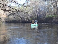 4288x3216 Canoeing, in Alapaha River at Statenville, January 2014 WWALS Outing, by Gretchen Quarterman, 18 January 2014
