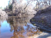 2048x1536 Looking downstream, in Alapaha River at Statenville, January 2014 WWALS Outing, by Gretchen Quarterman, 18 January 2014